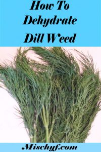 how to use fresh dill weed